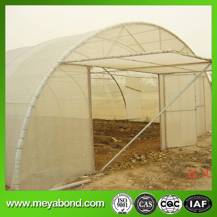 agricultural anti insect netting