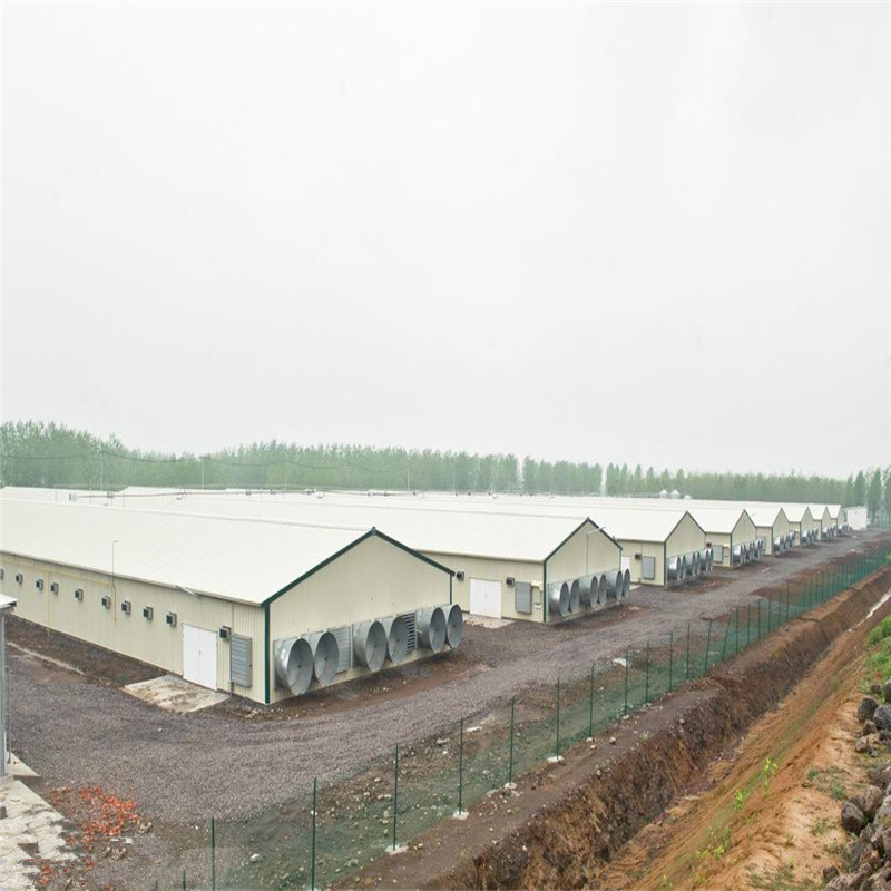 Light steel structure prefabricated poultry house for 10000 chickens