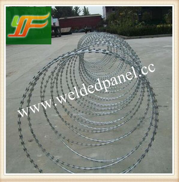 China best selling Hot-Dipped Galvanized and pvc coated razor Barbed Wire