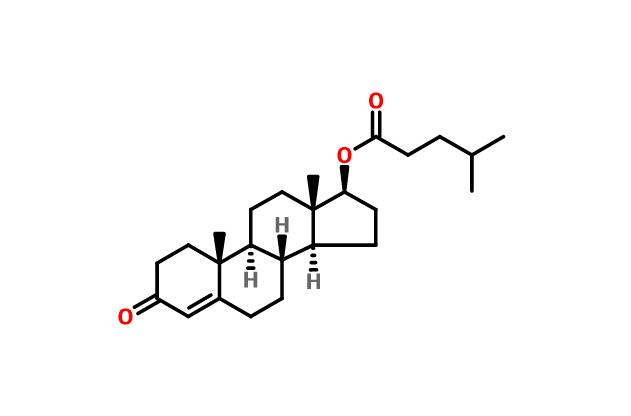 Testosterone isocaproate CAS 15262-86-9