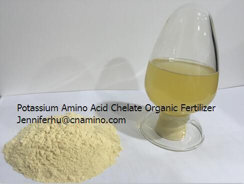 Potassium Amino Acid Chelated Powder / Organic Fertilizer