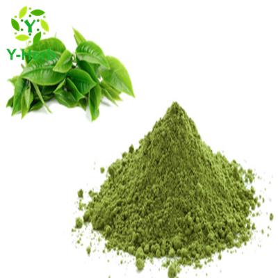 price per kg bulk macha green tea powder