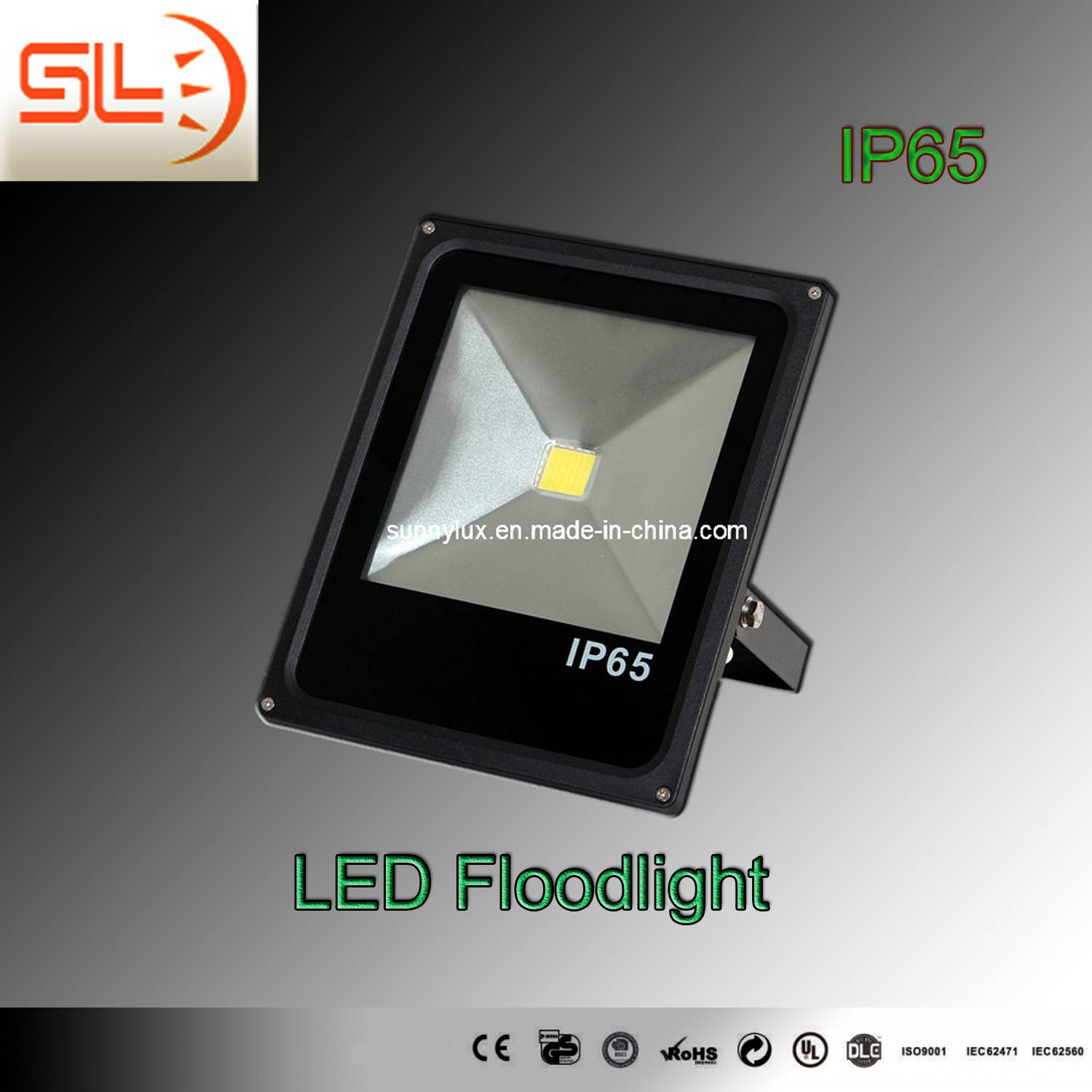 LED Floodlight in IP65 with CE RoHS