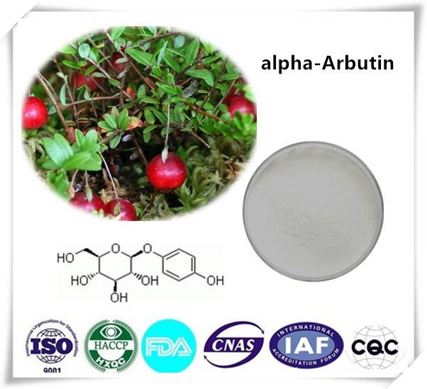 Alpha-arbutin 99% Cas number:84380-01-8  1kg/bag