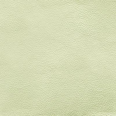 FGT8EV138-4 -semi pu synthetic leather for shoes