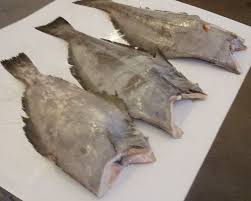 FROZEN GREENLAND HALIBUT FISH