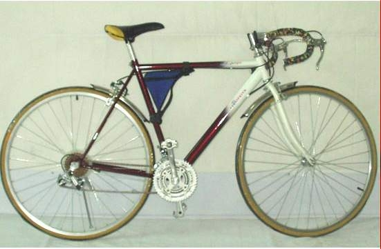 BMX bicycle(racer)(sports bicycle)(YL-0333)(2 kinds)