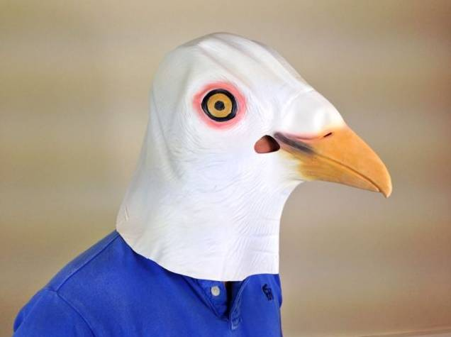 Youtumall White Pigeon Mask - Bird Animal Mask Fancy Dress