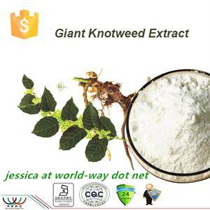 free sample HPLC10% 20% 50% 98% resveratrol giant knotweed P.E