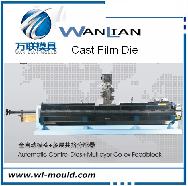 PP/PE/CPP/CPE/PA/EVOH cast film die/ extrusion film die/mold