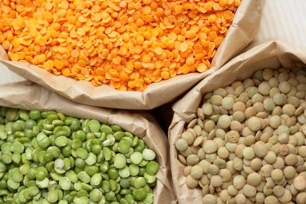 High Quality Lentils/Red Lentils/Green Lentils For Sale