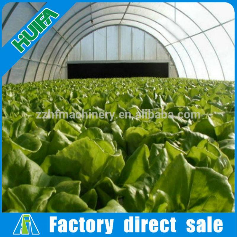 Low Cost Agricultural Greenhouse from China
