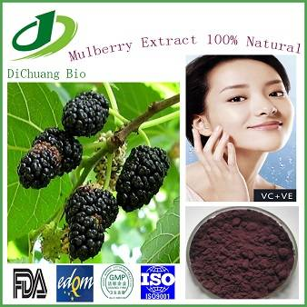 Natural Mulberry extract anthocyanidins 5%-25%