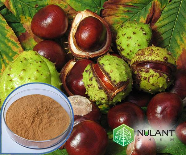 Horse chest nut extract 20% Aescin