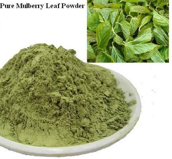 Quality Green Mulberry Leaf Powder