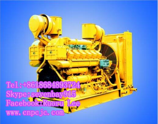 BG12V190ZL Series 2000 diesel engines (390~900KW)