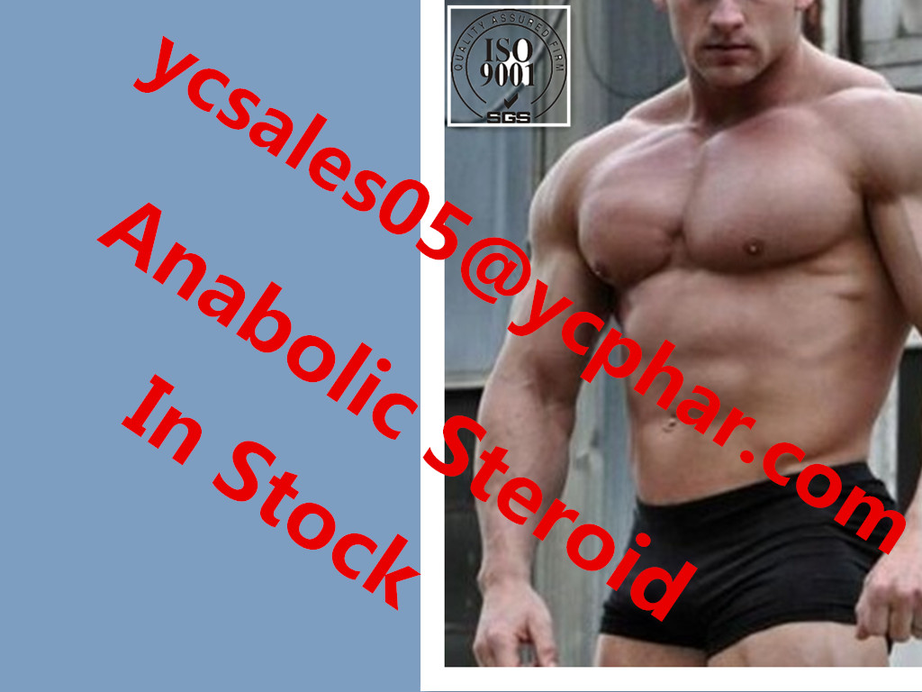 High quality Testosterone Base CAS58-22-0
