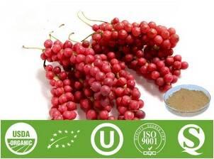 Schisandra Extract - Schizandrin 1%- 9%