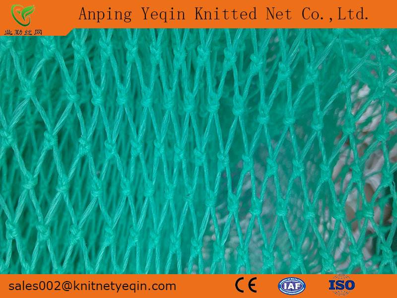 Anping Factory/Manufacturer High Quality Knotted Net