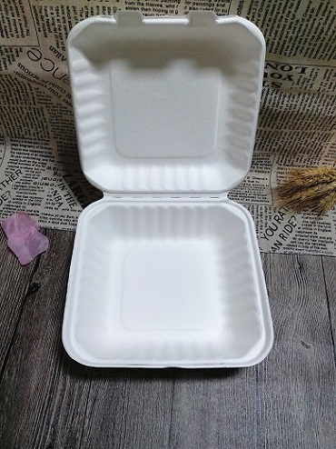 Biodegradable Bagasse To Go Food Container Disposable Bento Lunch Box