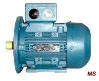 MS Series Three-Phase Asynchronous Motor With Aluminium Housing