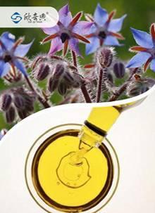 Organic borage seed oil