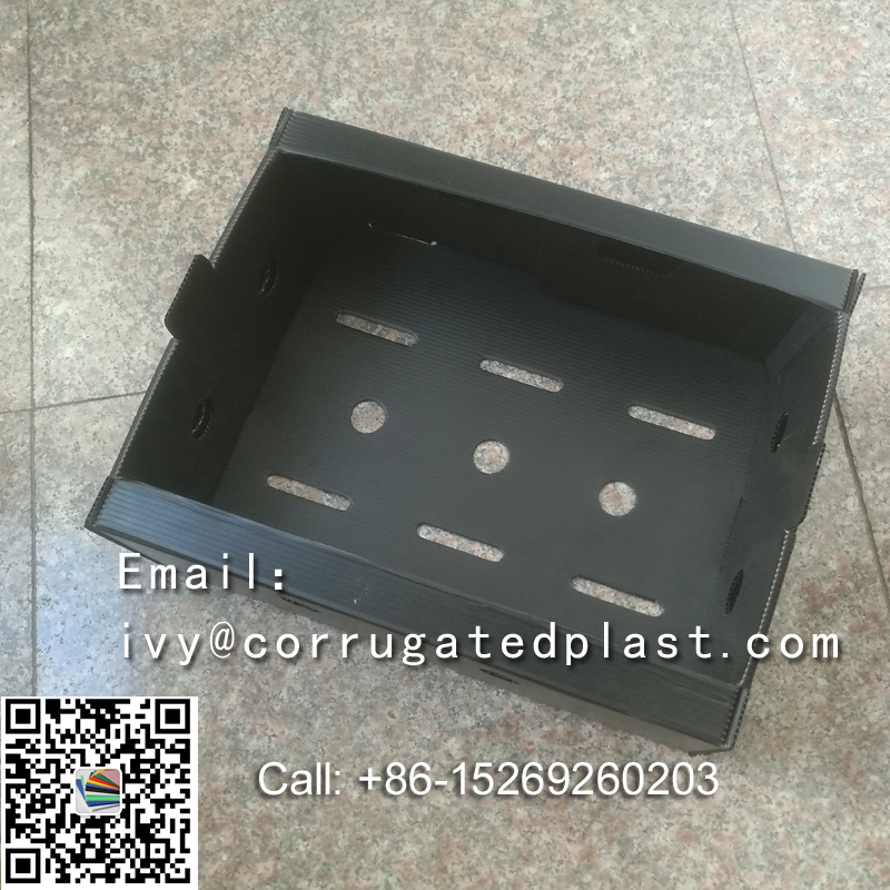 Okra Boxes,custom corrugated plastic boxes,pp corrugated plastic box