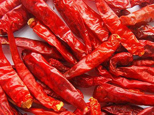 Dried Chilli From Viet Nam With Best Price