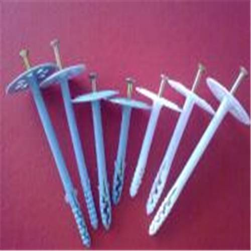 Popular hot sale plastic insulation nail/insulation fixing nail
