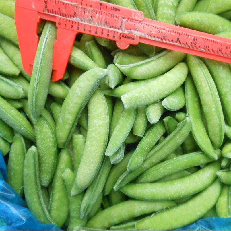 sell frozen sugar snap pea, IQF sugar snap pea