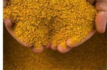 Low Price Animal Feed Corn Gluten Meal Min 60%