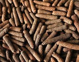 BEST PRICE FOR LONG PEPPER WITH GOOD QUALITY