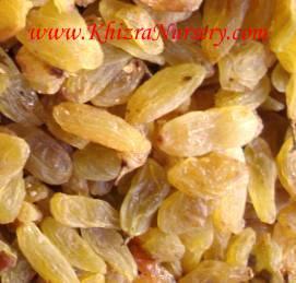 Golden Yellow Raisins