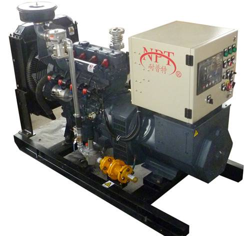 CE approved 30KW biogas generator