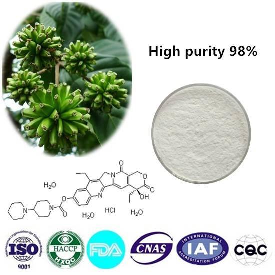 Irinotecan hydrochloride trihydrate 98% CAS NO:136572-09-3 10g/bag