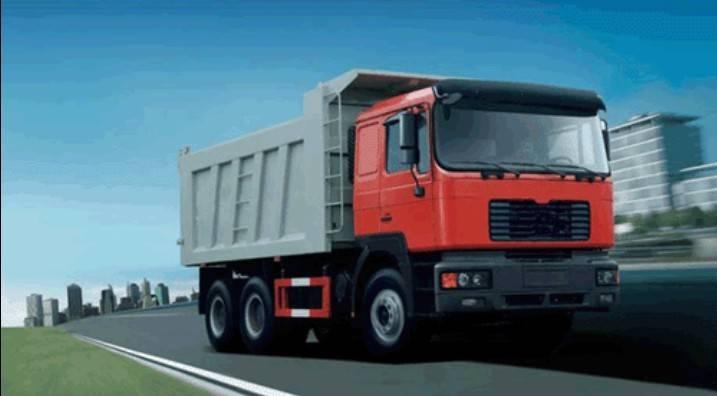 GW 3250FD Dumper Truck