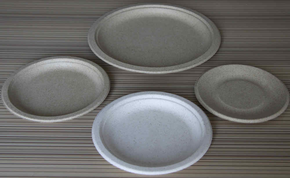 China Good Quality Paper Plate Equipment
