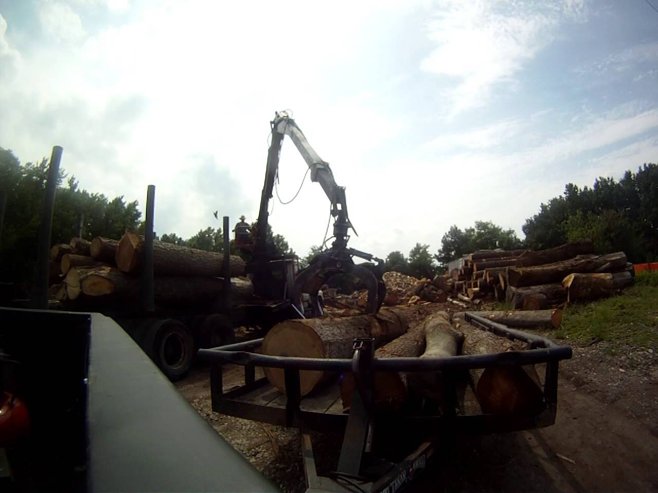 Round Timber Logs