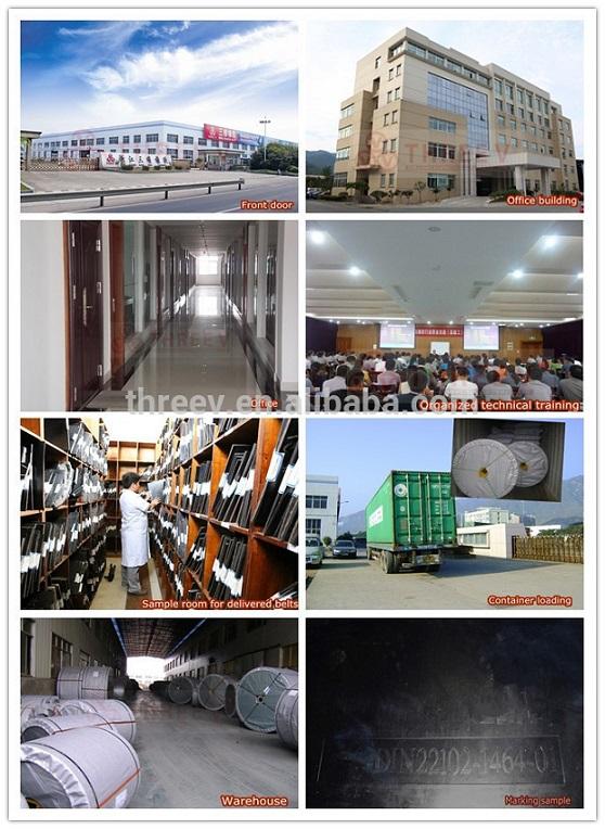 Heat Resistant Conveyor Belt from China