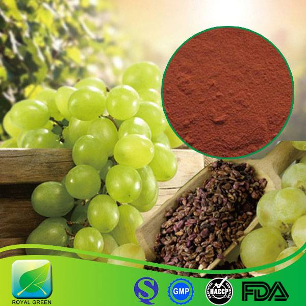 Hot Sale 100% Pure Natural High Quality Grape Seed Extract