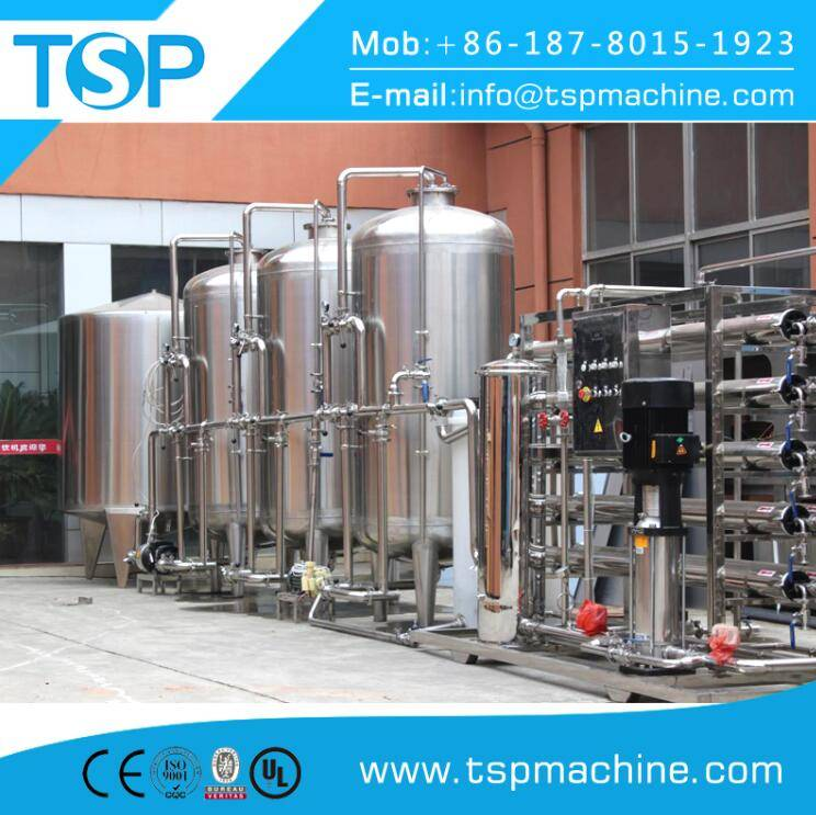 Water Purification Treatment Equipment/Reverse Osmosis Water Filter System for 2000 L/H