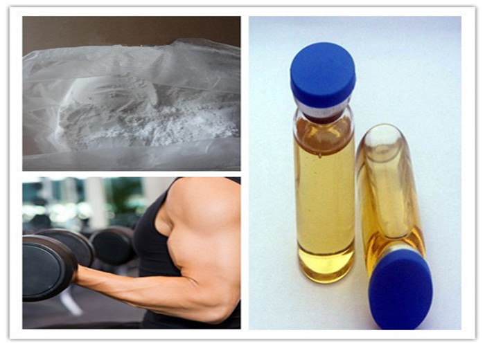 99% Grade Anabolic Steroid CAS 5949-44-0 Testosterone Undecanoate