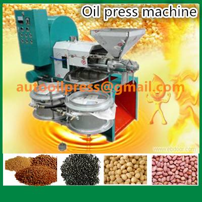 Soybean Corn Repeseed Sunflower Screw Oil Press Machine