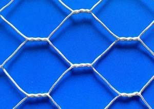 Profeessional 1 Inch Galvanized Hexagonal Wire Mesh Netting For Rabbit Cage