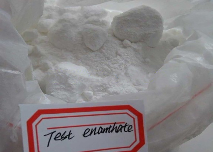 Testosyn Testosterone Enanthate Generic TestosteroneAnabolic Steroidfor Bodybuilding