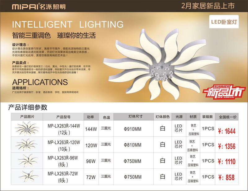 2017 LED modern ceiling light 22-year factory