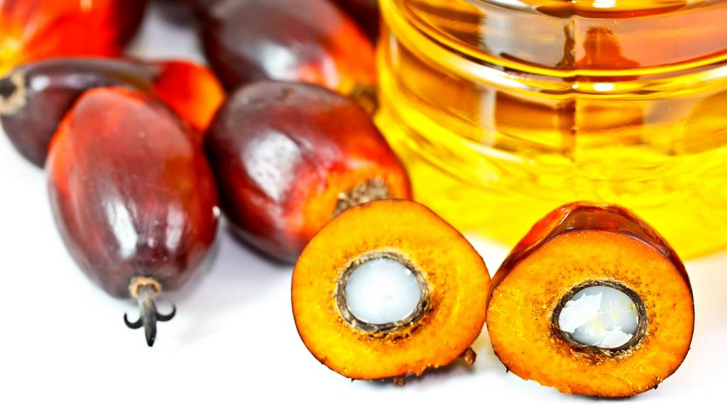 Quality Crude and Refined Palm Oil