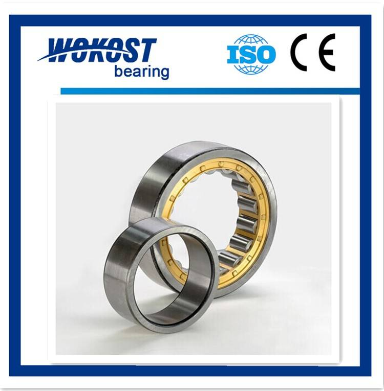 WOKOST cylindrical roller bearing