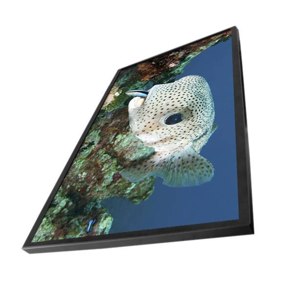 42inch indoor wall-mounted LCD advertising player