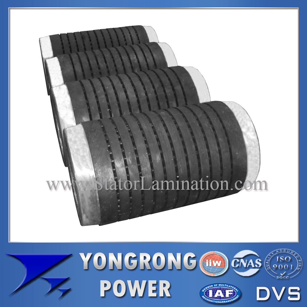 Premium Efficiency High Voltage Electric Motor Centrifugal Rotor Core